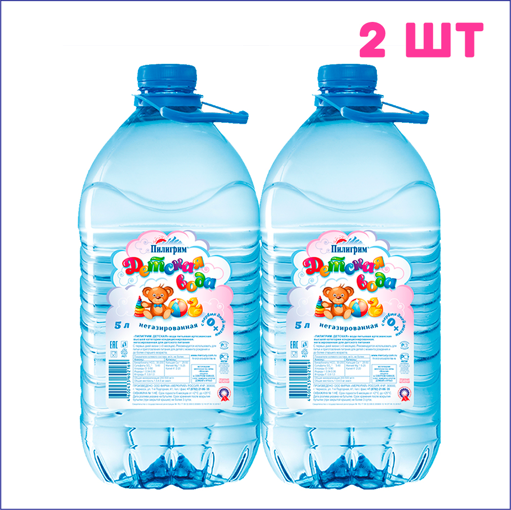 ДетскийПилигрим-5л-2ш
