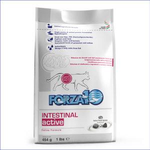 Intestinal Active 454 г